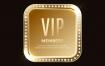 27款高端金色vip会员卡片名片贵宾皇冠麦穗图案AI矢量设计素材图