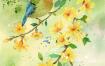 24款手绘国潮风水彩花鸟画十二月花信合集插画装饰画挂画PSD设计素材