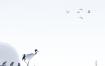 13款风雪景美女中式古典写真相册影楼传统背景PSD分层图设计素材模板