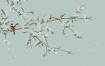 18款古风工笔画花鸟高清图PSD影楼相册S中国风古典背景图设计模板素材