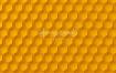 15款蜂蜜蜂巢六边形PSD素材下载