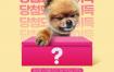 12款动物宠物动物PSD格式