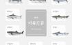 9款水产品海鲜鱼观赏鱼插图AI格式
