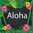 40个矢量热带植物元素EPS源文件打包下载