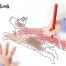 彩色卡通萌犬可爱小狗绘画手绘素材PNG免抠EPS矢量设计素材
