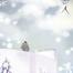 15款恋人浪漫插画秋叶雪松沙滩唯美插画海报PSD设计素材