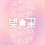 13款唯美鲜花桃花樱花植物树枝花纹海报PSD分层设计素材