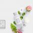 3.67G时尚小清新正视图护肤品化妆品文具展示模型样机包装VI设计高清摄影psd素材下载
