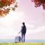 15款秋天踏青春野外露营青草春游叶子窗外海报树木植物PSD分层素材